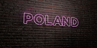 POLAND -Realistic Neon Sign on Brick Wall background - 3D rendered royalty free stock image. Can be used for online banner ads and direct mailers stock illustration