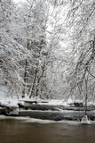 Poland - Roztocze, winter Royalty Free Stock Image