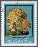 POLAND - 1980: shows Sparassis crispa, series Xerocomus Parasiticus Royalty Free Stock Images