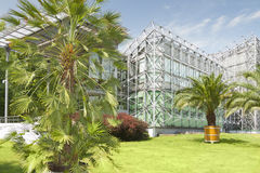 Poland, Silesia, Gliwice, Palm House Stock Image