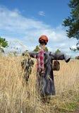 poland Spaventapasseri sul giacimento di grano Vista verticale Fotografia Stock Libera da Diritti