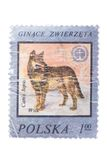 POLAND: A stamp printed in from the Forest Animals issu Stock Photography