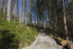 Poland - Tatra National Park in Tatra Mountains, part of Carpath Stock Image