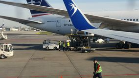 poland warsaw April 20, 2019 Lasta av polska flygbolag för flygplan MYCKET En grupp av arbetare lastar av nivån i a stock video
