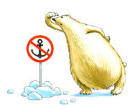 Polar bear. The polar bear protects border of Arctic regions Stock Image