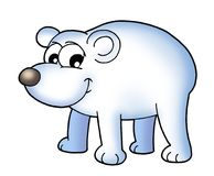 Polar bear. Color illustration of polar bear stock illustration