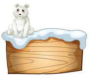 A polar bear above an empty wooden board Royalty Free Stock Photo