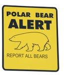 Polar bear alert Stock Photography