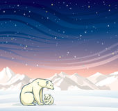 Polar bear with baby and winter landscape at night. Stock Photo
