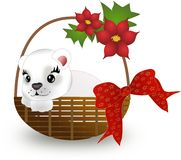 Polar bear in basket Stock Photo