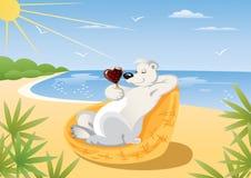 Polar Bear On The Beach Royalty Free Stock Photography