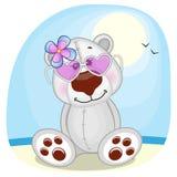 Polar Bear on the beach Stock Image
