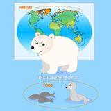 Polar bear card illustration Royalty Free Stock Image