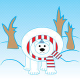Polar Bear. A carnivorous mammal of the family bear, a close relative of the brown bear. Winter, north pole, snow, tree, snow, scarf, hat, stripes, cold Stock Image