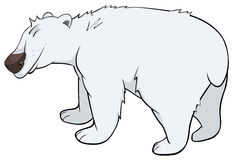 Polar bear cartoon Stock Images