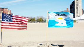 Polar bear club flag,Coney Island Royalty Free Stock Image