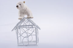 Polar bear cub in on thee roof. Polar bear cub on the roof of a model house mado of roof Stock Photo