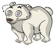 Polar bear with dizzy eyes Stock Photography