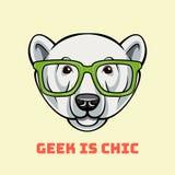 Polar Bear face in geek glasses. Geek is chic. Vector illustration isolated on white. Polar Bear face in nerdy glasses. Geek is chic. Vector illustration vector illustration