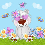 Polar Bear with flowers Stock Images