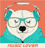 Polar Bear with glasses and headphones Stock Photography