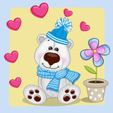 Polar Bear with heart and flower Royalty Free Stock Photography