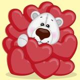Polar Bear in hearts Royalty Free Stock Photography