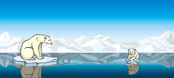 Polar bear and his baby. Global warming. Stock Photos