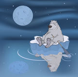 Polar bear on an ice floe. Polar bear floating on an ice floe under the star sky stock illustration