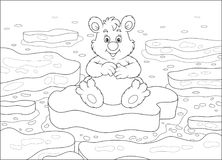 Polar bear on an ice floe. Big white bear sitting on a drifting ice floe in an arctic sea, black and white vector illustration in a cartoon style for a coloring stock illustration