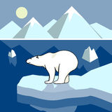 Polar bear on an ice floe, polar landscape. On the image is presented Polar bear on an ice floe, polar landscape royalty free illustration