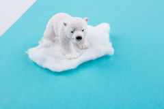 Polar bear on ice on water Royalty Free Stock Photography