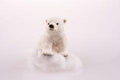 Polar bear on ice. On a white background Royalty Free Stock Image