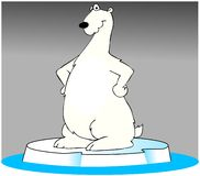 Polar bear on an iceberg Royalty Free Stock Photos