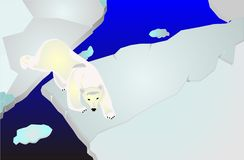Polar bear on icepack walking illustration Stock Photography