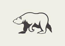 Polar bear. Illustration of colour polar bear Royalty Free Stock Image
