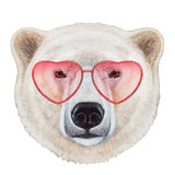 Polar Bear in Love! Portrait of Polar Bear with heart shaped sunglasses. Stock Images