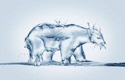 Polar Bear Melting, Global Warming Royalty Free Stock Image