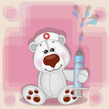 Polar Bear nurse Stock Image