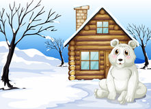 A polar bear outside the wooden house Stock Photo