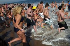 Polar Bear Plunge Stock Image