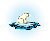 Polar bear and polluted sea Stock Images
