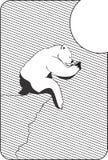 Polar bear. Stock Photography