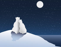 Polar Bear Romance Royalty Free Stock Photography