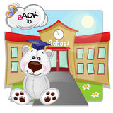 Polar Bear and school Royalty Free Stock Photos