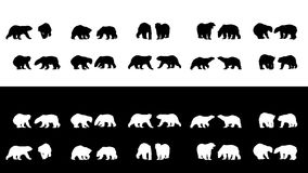 Polar bear silhouettes Stock Photos