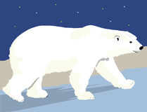 Polar Bear Simple Stock Image
