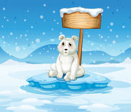 A polar bear sitting under the empty wooden signboard Stock Images