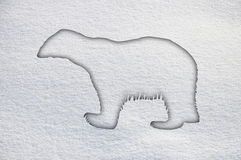 Polar bear in snow Royalty Free Stock Photos