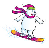 Polar Bear Snowboarding Royalty Free Stock Image